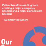 https://www.dorsetsvision.nhs.uk/wp-content/uploads/2018/10/PBC-Summary-Document-25-10-18.pdf